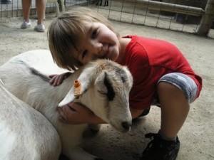 goat.hug